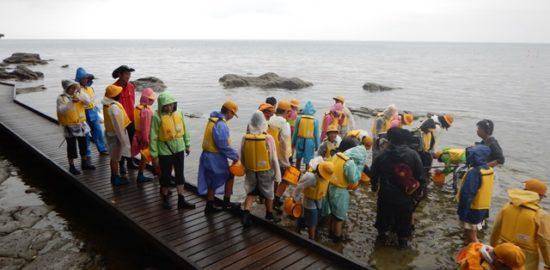 九十九湾の自然観察