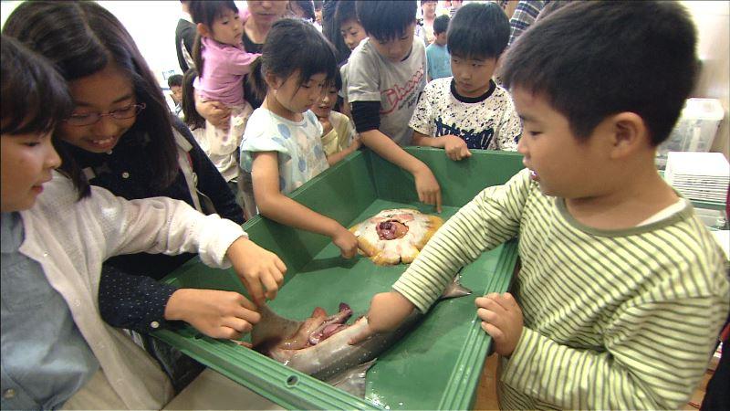 #10海みらいサメを触る子ども達
