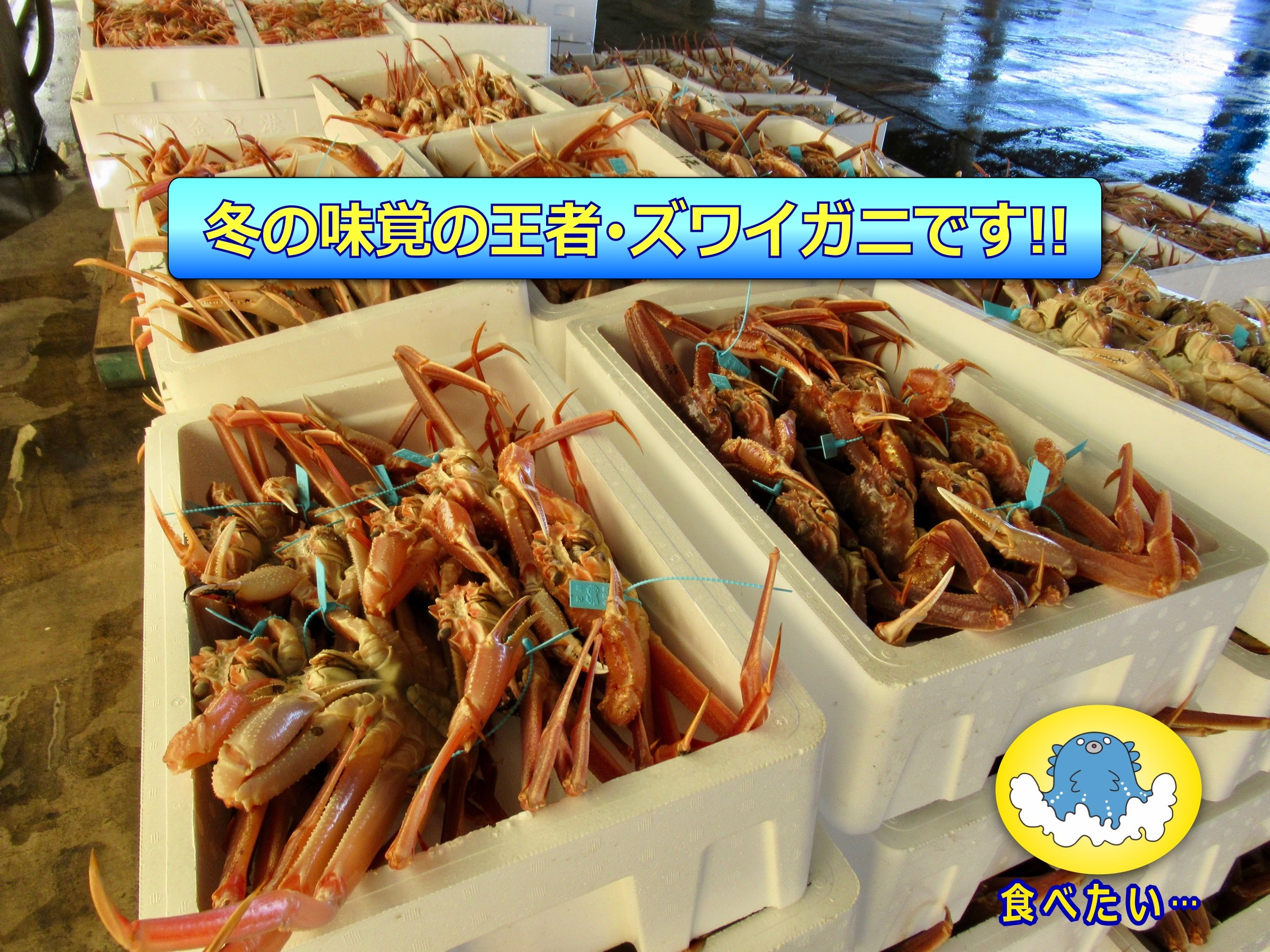 金沢港-1