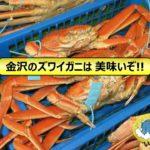 いきいき魚市-1