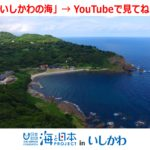 036 YouTube