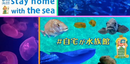 のとじま水族館-1