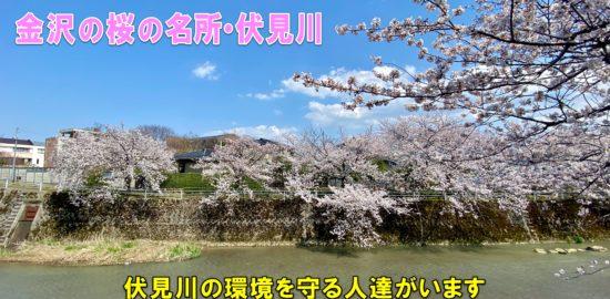 伏見川-1