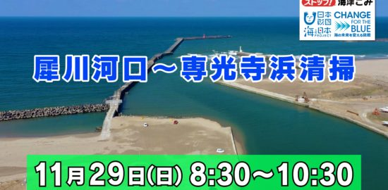 専光寺清掃1129-1
